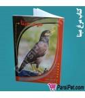 حلقه واشری کبوتر